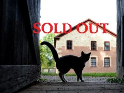 Historical Paranormal Investigation @ The Hill - SOLD OUT @ Heritage Hill State Park | Allouez | Wisconsin | United States