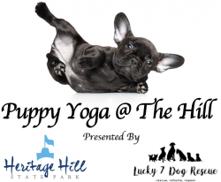 Puppy Yoga @ The Hill (Held Indoors) @ Heritage Hill State Park (Indoors) | Allouez | Wisconsin | United States